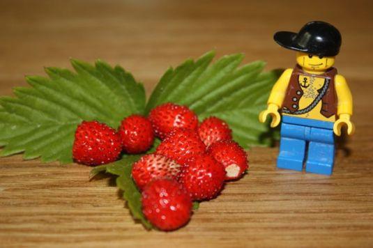 Mini mit Lego
