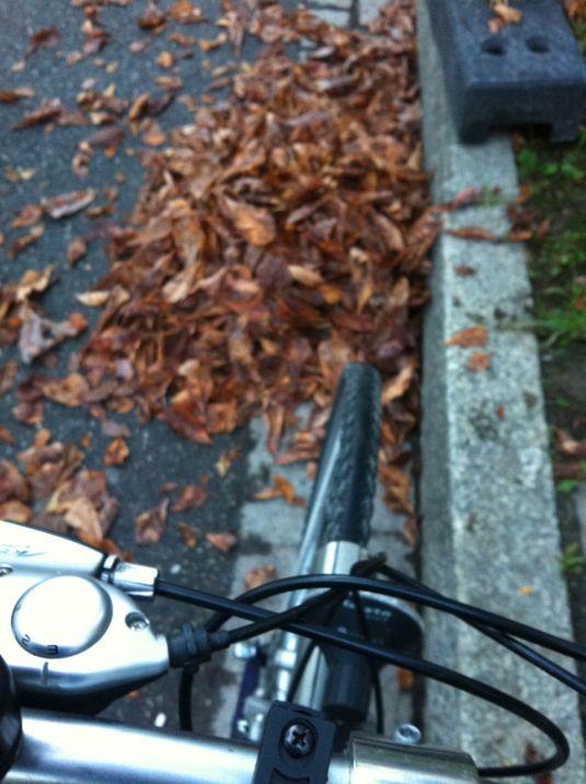 Velo-Herbst
