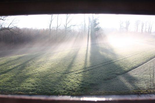 Sonne im Nebel2