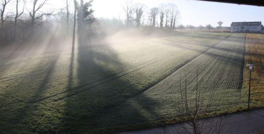 Sonne im Nebel1